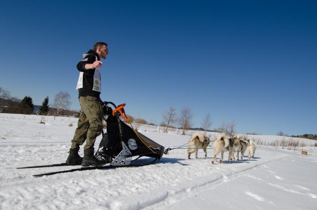 wyścigi psich zaprzęgów Kraina Wilka